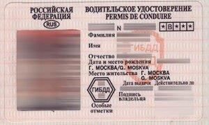 Проверить водительское удостоверение по базе ГИБДД онлайн и бесплатно